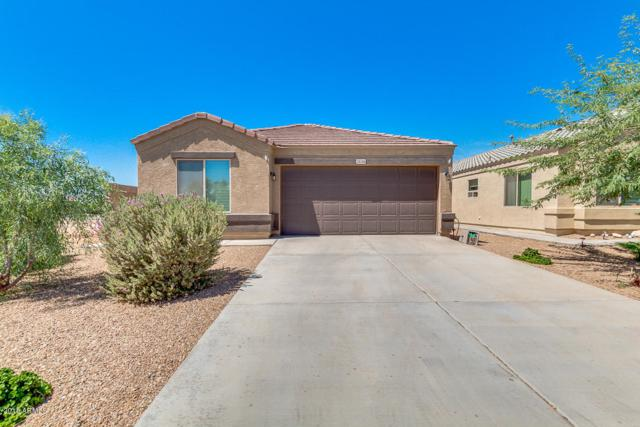 28346 N Ametrine Way, San Tan Valley, AZ 85143 (MLS #5816422) :: Occasio Realty