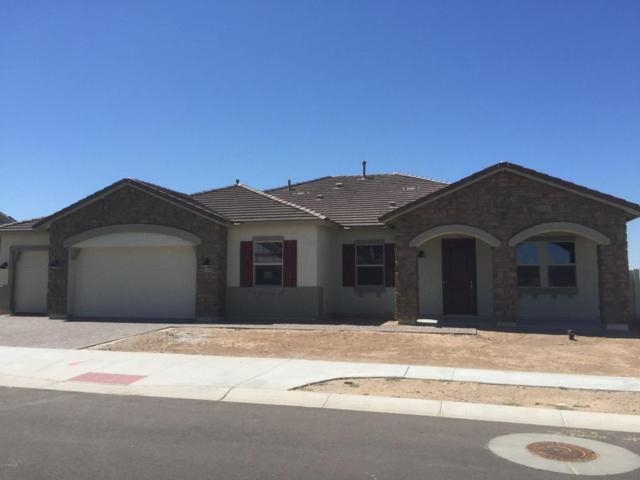 8612 S 16TH Drive, Phoenix, AZ 85041 (MLS #5816490) :: Team Wilson Real Estate
