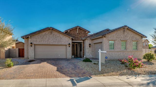 5837 W Plum Road, Phoenix, AZ 85083 (MLS #5816519) :: REMAX Professionals