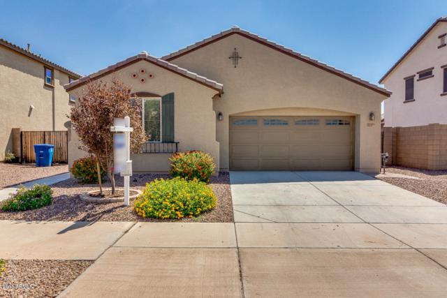 20969 E Via De Olivos, Queen Creek, AZ 85142 (MLS #5816527) :: The Garcia Group @ My Home Group