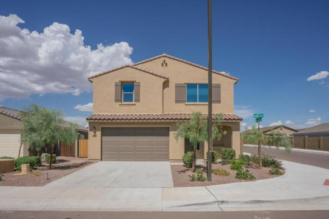 21410 W Holly Street, Buckeye, AZ 85396 (MLS #5816528) :: Occasio Realty