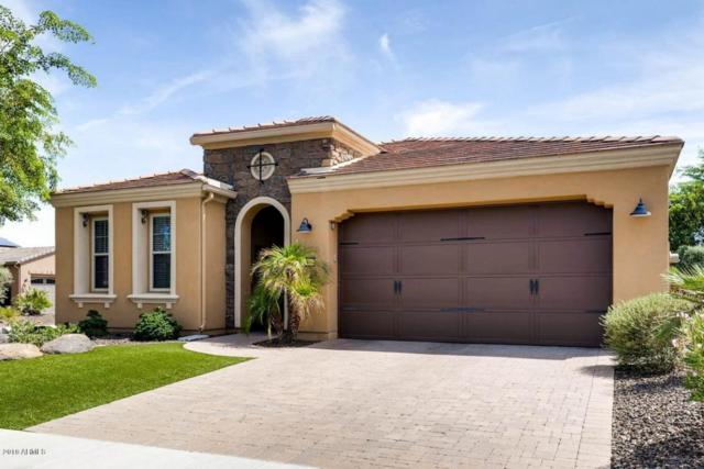 12953 W Mayberry Trail, Peoria, AZ 85383 (MLS #5816575) :: The Wehner Group