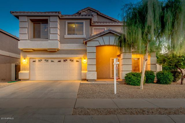 16535 W Lilac Street, Goodyear, AZ 85338 (MLS #5816589) :: The Wehner Group