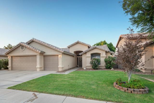 1182 W Honeysuckle Lane, Chandler, AZ 85248 (MLS #5816603) :: Occasio Realty