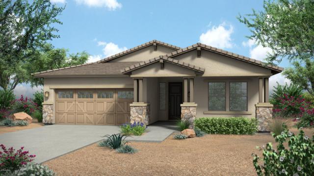 20449 W Legend Trail, Buckeye, AZ 85396 (MLS #5816605) :: The Jesse Herfel Real Estate Group