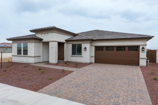 20527 W Delaney Drive, Buckeye, AZ 85396 (MLS #5816640) :: The Daniel Montez Real Estate Group