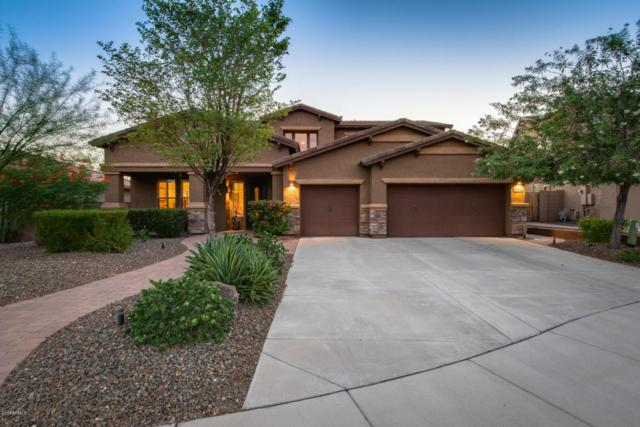 31132 N 134TH Drive, Peoria, AZ 85383 (MLS #5816694) :: Gilbert Arizona Realty