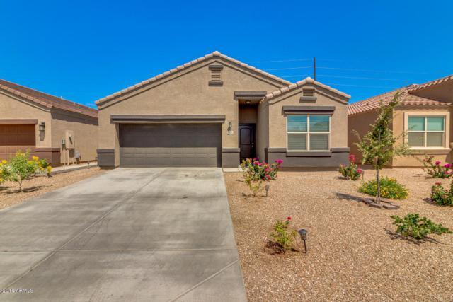29129 N Fire Agate Road, San Tan Valley, AZ 85143 (MLS #5816816) :: Occasio Realty
