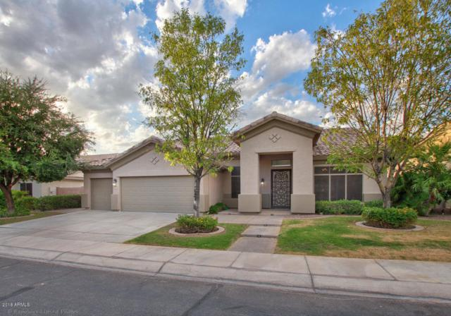 3722 S Rosemary Drive, Chandler, AZ 85248 (MLS #5816821) :: RE/MAX Excalibur