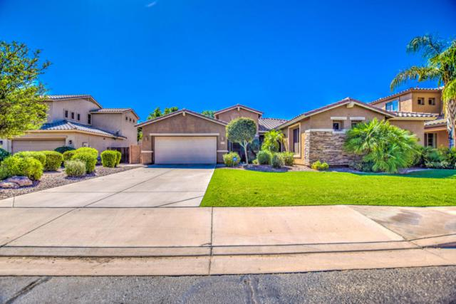 4224 S Roger Way, Chandler, AZ 85249 (MLS #5816824) :: Gilbert Arizona Realty