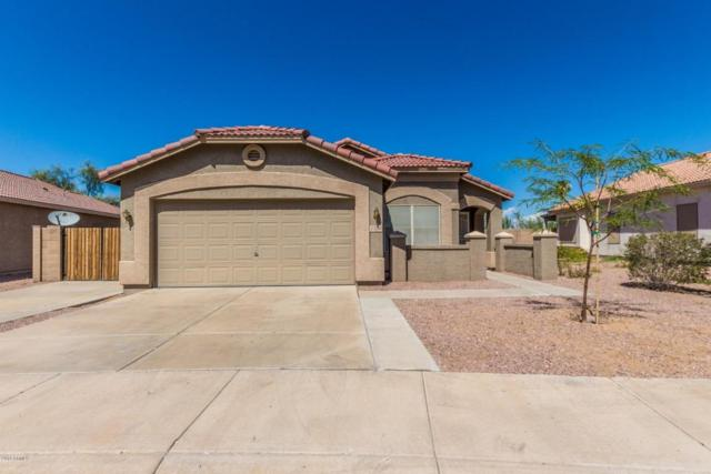1130 E Pedro Road, Phoenix, AZ 85042 (MLS #5816859) :: Occasio Realty