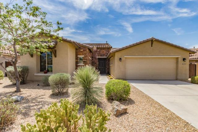 13656 S 176TH Drive, Goodyear, AZ 85338 (MLS #5816883) :: The Jesse Herfel Real Estate Group