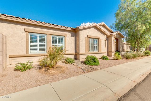 6287 S Kimberlee Way, Chandler, AZ 85249 (MLS #5816909) :: Keller Williams Realty Phoenix