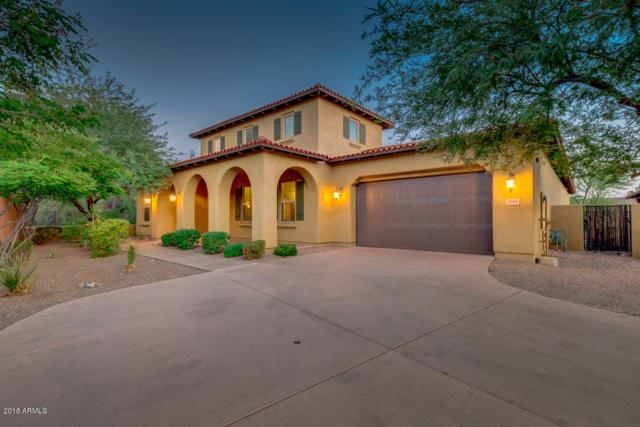 9461 E Desert Village Drive, Scottsdale, AZ 85255 (MLS #5816974) :: Keller Williams Realty Phoenix