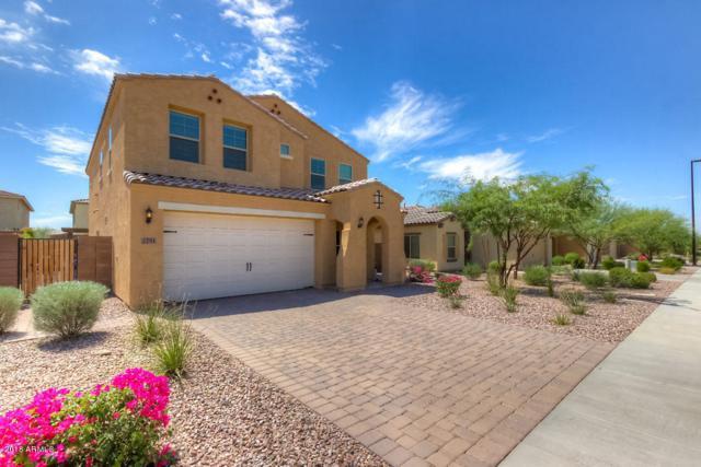 2751 E Mews Road, Gilbert, AZ 85298 (MLS #5816983) :: Occasio Realty