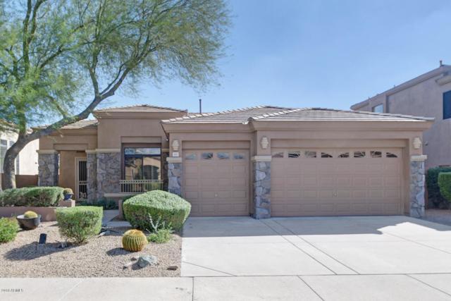 5223 E Herrera Drive, Phoenix, AZ 85054 (MLS #5817062) :: The Carin Nguyen Team