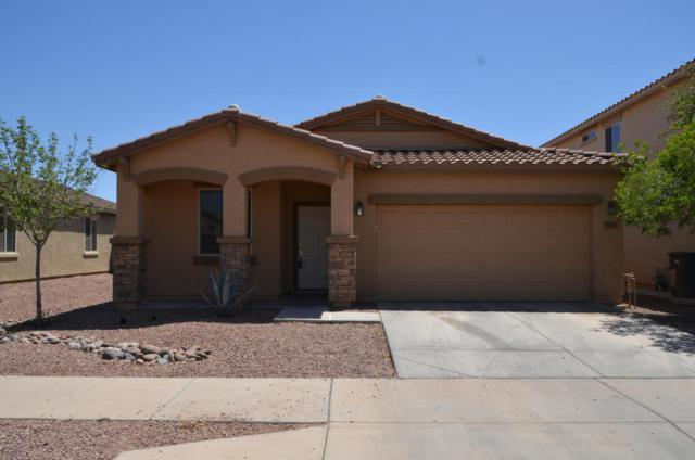 7417 W St Catherine Avenue, Laveen, AZ 85339 (MLS #5817096) :: The Everest Team at My Home Group