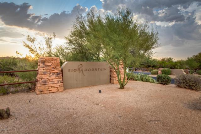 28413 N 151ST Street, Scottsdale, AZ 85262 (MLS #5817112) :: Brett Tanner Home Selling Team