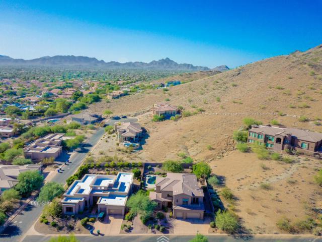 2723 E Gelding Drive, Phoenix, AZ 85032 (MLS #5817139) :: Sibbach Team - Realty One Group