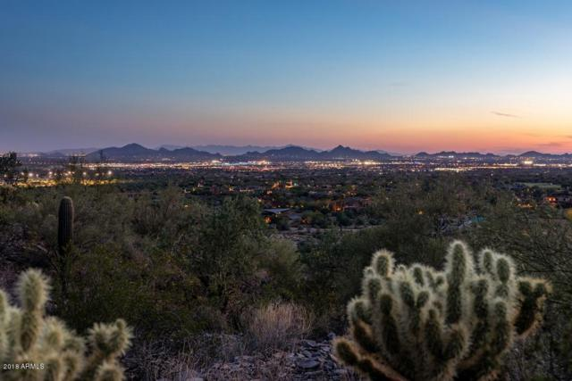 21283 N 102ND Street, Scottsdale, AZ 85255 (MLS #5817279) :: The W Group