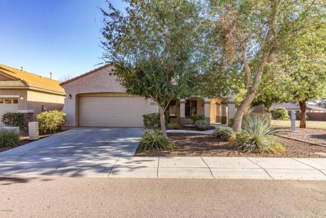 5325 W Saddlehorn Road, Phoenix, AZ 85083 (MLS #5817346) :: The Laughton Team