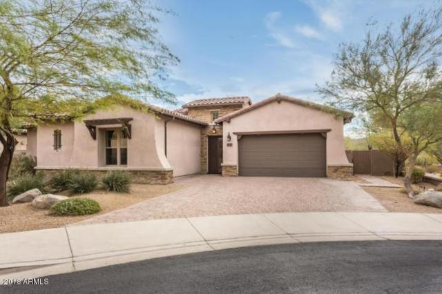 27417 N 86TH Lane, Peoria, AZ 85383 (MLS #5817359) :: The Laughton Team