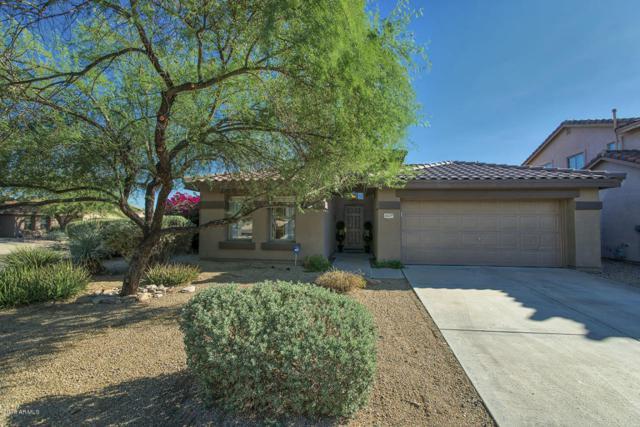 10239 E Salt Bush Drive, Scottsdale, AZ 85255 (MLS #5817500) :: Occasio Realty