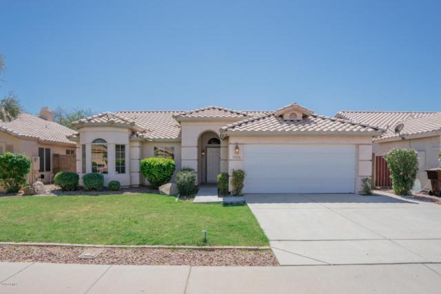 18236 N 85TH Drive, Peoria, AZ 85382 (MLS #5817518) :: Team Wilson Real Estate