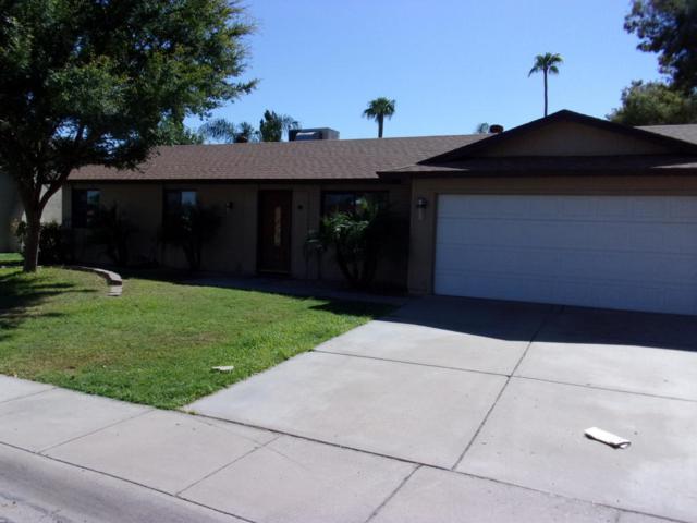 5135 E Tamblo Drive, Phoenix, AZ 85044 (MLS #5817550) :: Team Wilson Real Estate