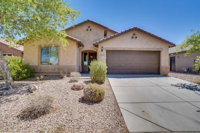 2183 N Daisy Court, Florence, AZ 85132 (MLS #5817776) :: Occasio Realty
