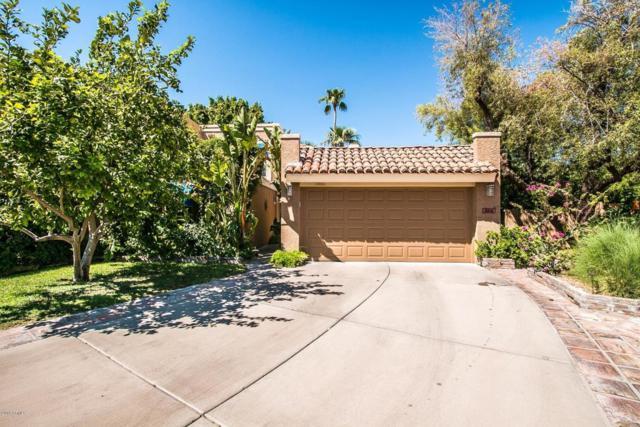 10648 N 11th Street, Phoenix, AZ 85020 (MLS #5817802) :: Conway Real Estate