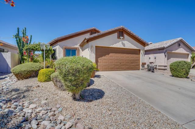 33810 N Mercedes Drive, Queen Creek, AZ 85142 (MLS #5817824) :: The Garcia Group @ My Home Group