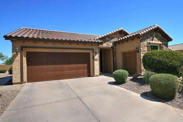 7416 W Patriot Way, Florence, AZ 85132 (MLS #5817861) :: Occasio Realty