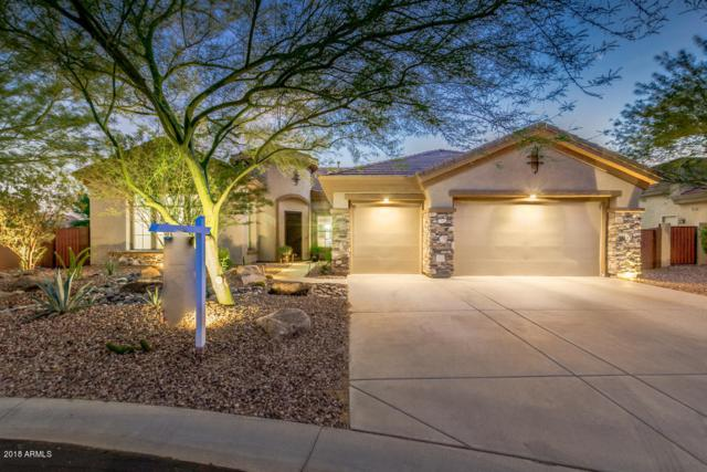 41904 N Alistair Way, Phoenix, AZ 85086 (MLS #5817878) :: Occasio Realty