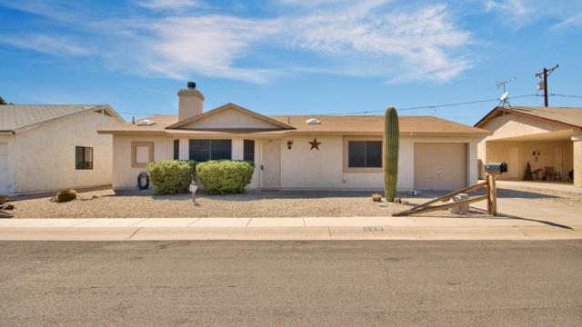 540 S Stardust Lane, Apache Junction, AZ 85120 (MLS #5817915) :: The Garcia Group