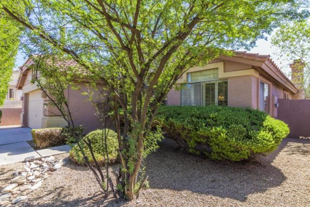 10391 E Morning Star Drive, Scottsdale, AZ 85255 (MLS #5817967) :: The Everest Team at My Home Group