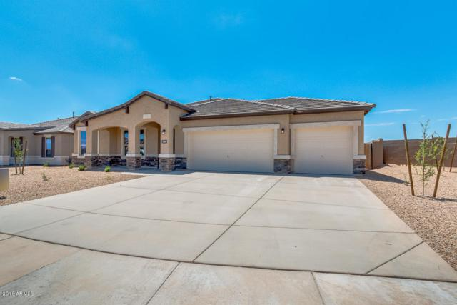26033 N 137TH Lane, Peoria, AZ 85383 (MLS #5817997) :: The Garcia Group