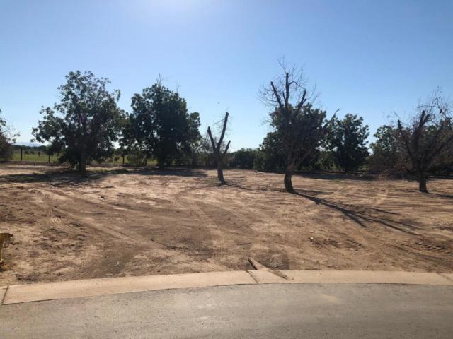 20587 E Via De Palmas, Queen Creek, AZ 85142 (MLS #5818122) :: Yost Realty Group at RE/MAX Casa Grande