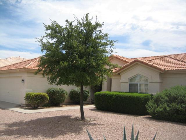 10221 E Hercules Drive, Sun Lakes, AZ 85248 (MLS #5818126) :: Occasio Realty