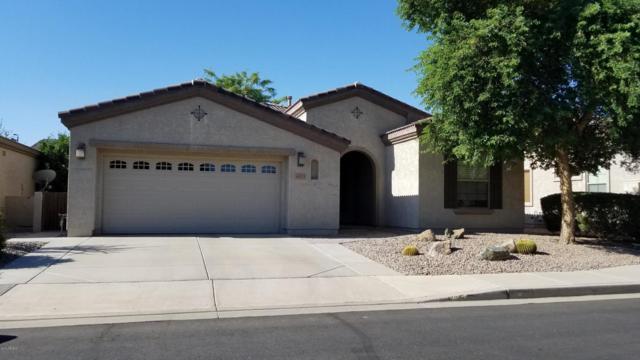 4573 E Carob Drive, Gilbert, AZ 85298 (MLS #5818154) :: The Wehner Group