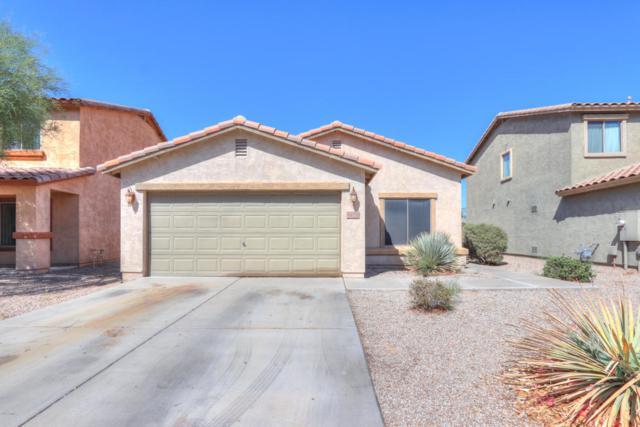 44732 W Balboa Drive, Maricopa, AZ 85139 (MLS #5818215) :: The W Group