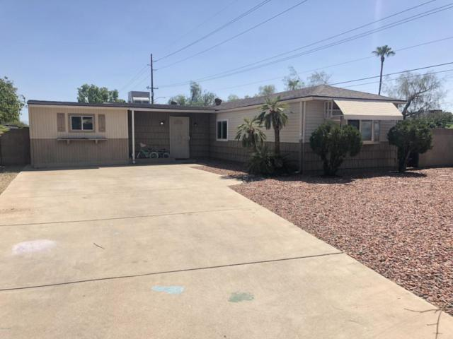 17801 N 3RD Place, Phoenix, AZ 85022 (MLS #5818296) :: Lifestyle Partners Team