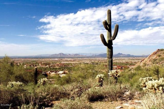 21009 N 104TH Street, Scottsdale, AZ 85255 (MLS #5818313) :: Santizo Realty Group