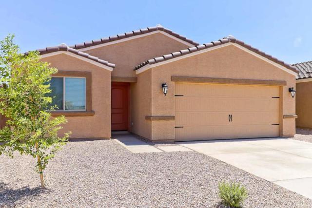13193 E Desert Lily Lane, Florence, AZ 85132 (MLS #5818365) :: RE/MAX Excalibur
