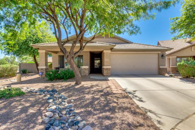 21283 N Van Loo Drive, Maricopa, AZ 85138 (MLS #5818378) :: Yost Realty Group at RE/MAX Casa Grande