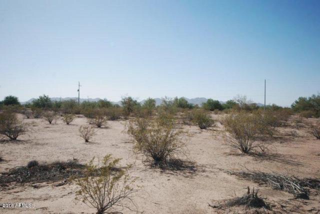 1836 N Davis Court, Maricopa, AZ 85139 (MLS #5818419) :: Yost Realty Group at RE/MAX Casa Grande
