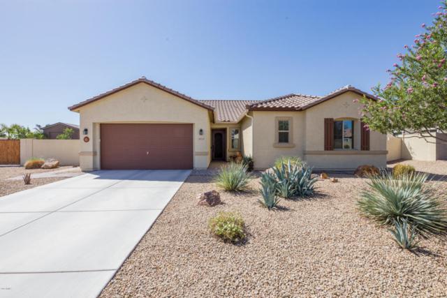 18319 W Marshall Avenue, Litchfield Park, AZ 85340 (MLS #5818444) :: Occasio Realty