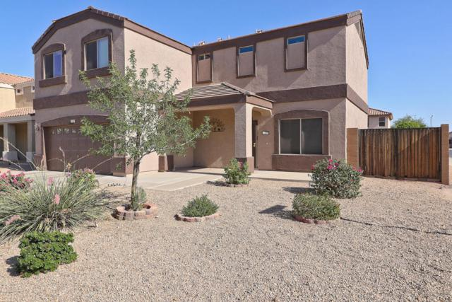 12121 W Dreyfus Drive, El Mirage, AZ 85335 (MLS #5818445) :: Kelly Cook Real Estate Group