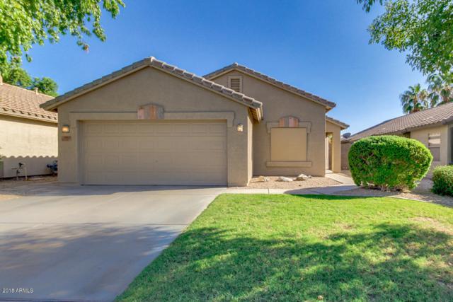 10933 E Wier Avenue, Mesa, AZ 85208 (MLS #5818558) :: The Wehner Group