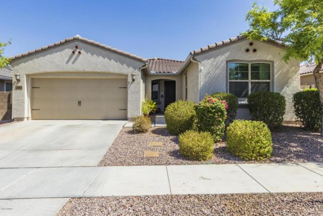 8986 W Ruth Avenue, Peoria, AZ 85345 (MLS #5818600) :: The Wehner Group